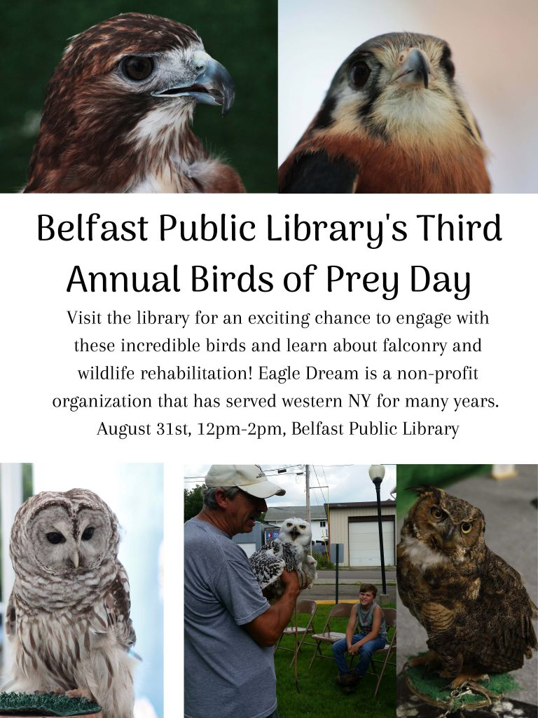 Birds of Prey Day at the Library 8/31 at 12pm