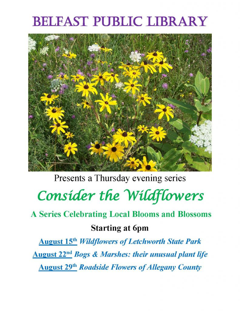 Wildflower Series Workshop